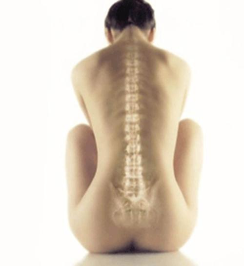 En la medula espinal que lleva seg 250 n su gravedad a la perdida de