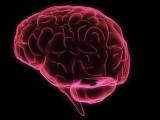 La ADP-GH denuncia el infradiagnóstico del déficit de la hormona de crecimiento