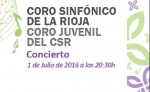 concierto solidario CSR-FEDER