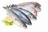 El consumo de pescado disminuye la mortalidad en el cáncer colorrectal