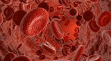 Niveles elevados de hormona tiroidea aumentan el riesgo de muerte súbita