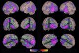 Epilepsia: atención multidisciplinar y centros de referencia