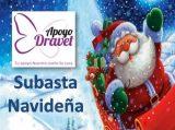 En marcha la Subasta Navideña Solidaria on line de Apoyo Dravet