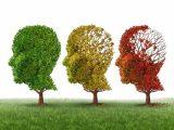 La recuperación funcional es clave en la enfermedad mental grave