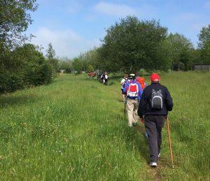 HAEi y AEDAF organizan del 15 al 19 de mayo un recorrido especial del Camino de Santiago.