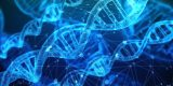La OMS lanza un registro mundial sobre la edición del genoma humano