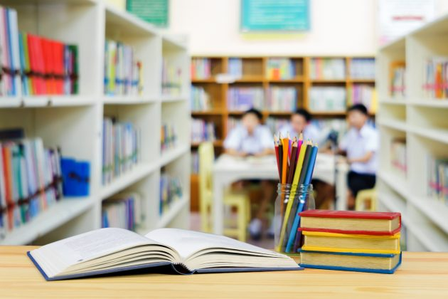 colegio lectura libros
