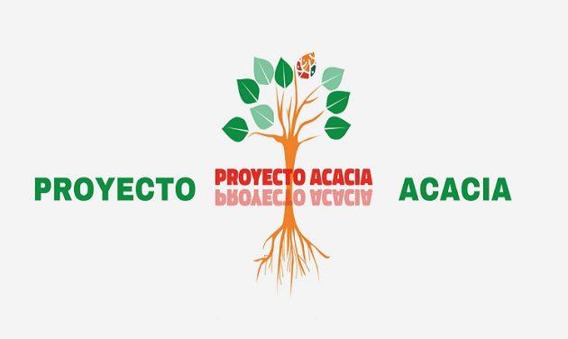 Proyecto-ACACIA-1