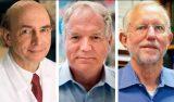 Premio Nobel para los descubridores del virus de la hepatitis C