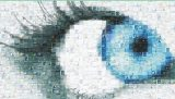 Avances en las distrofias hereditarias de la retina